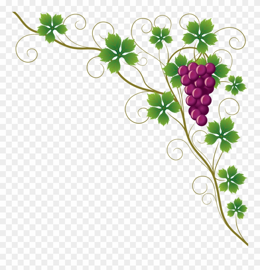 30 300756 Common Grape Leaves Wine Clip Art Grapes Png